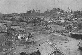 The long history of new zealand
